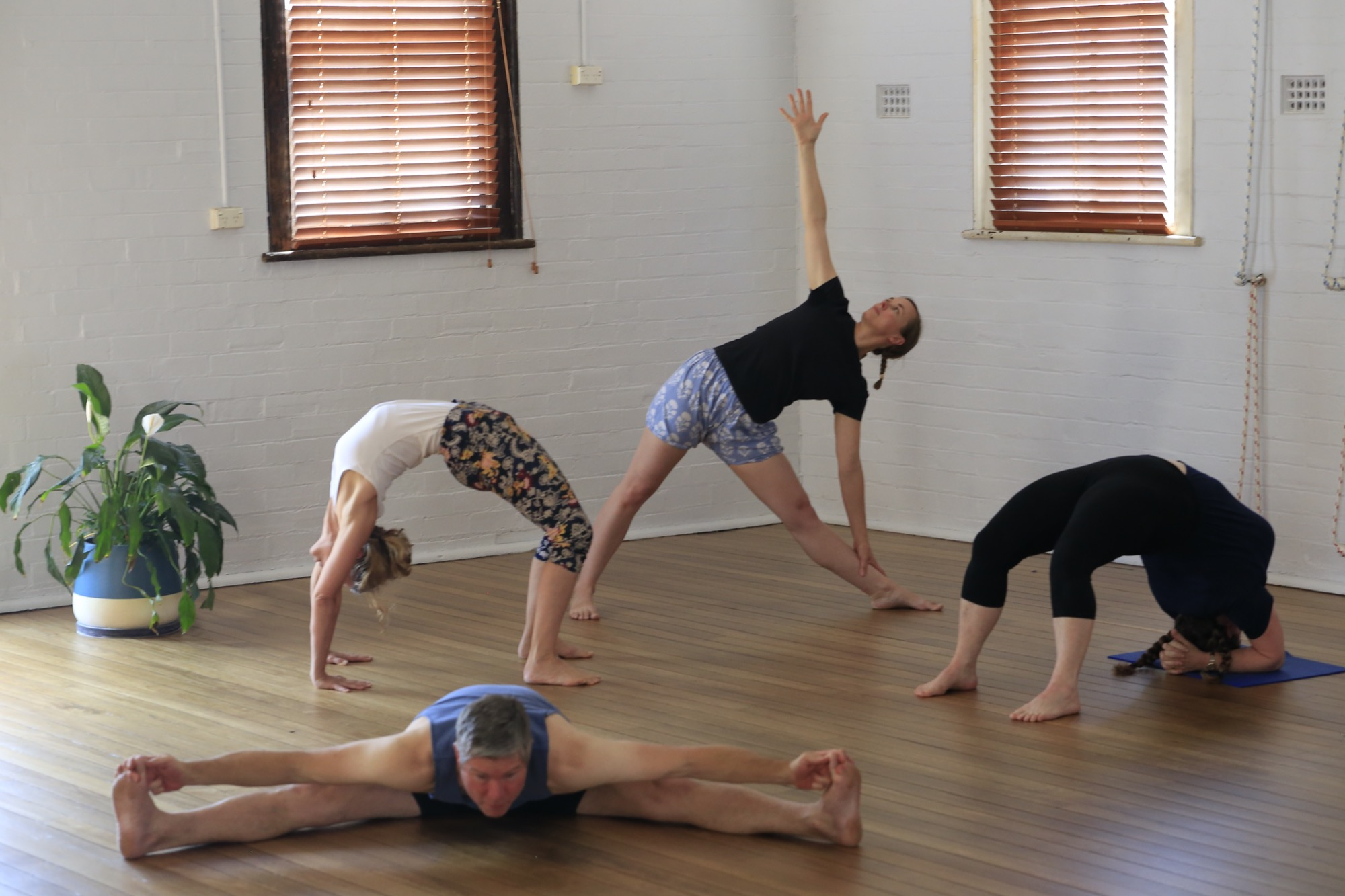 New students Hamilton Yoga